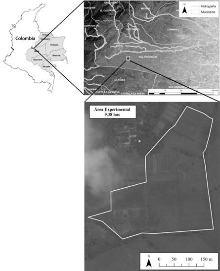 Localización del área experimental