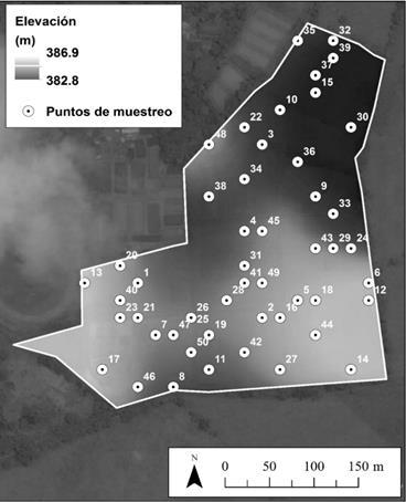 Distribución espacial de la elevación y los puntos de muestreo determinados a partir del algoritmo hipercubo latino condicionado (HCLc)