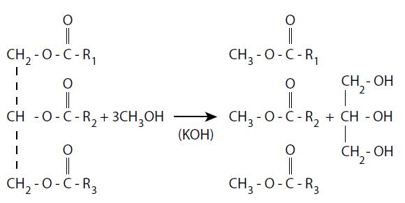 Transesterificacion del biodiésel