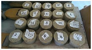 Briquetas fabricadas