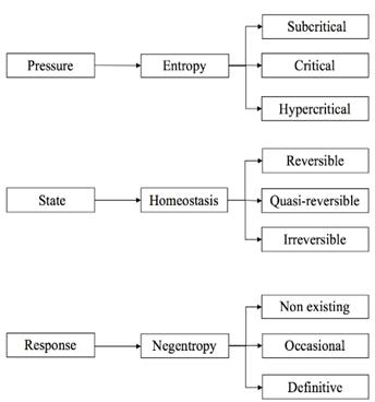 Estructura del modelo EHN