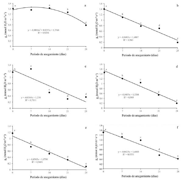 Efecto de diferentes periodos de anegamiento sobre la conductancia estomática (gs) en plantas de (a) Q. humboldtii, (b) J. neotropica, (c) F. tequendamae, (d) D. coerulea, (e) D. viscosa, (f) S. viarum. Promedios seguidos de letras iguales no presentan diferencias estadísticas de acuerdo con la prueba de Tukey (5%).