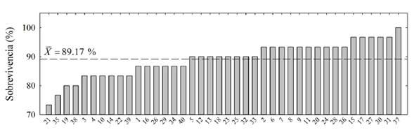 Sobrevivencia en porcentaje para 40 familias de polinización abierta de T. grandis a los 4.3 años. La línea horizontal discontinua representa la sobrevivencia media del ensayo.