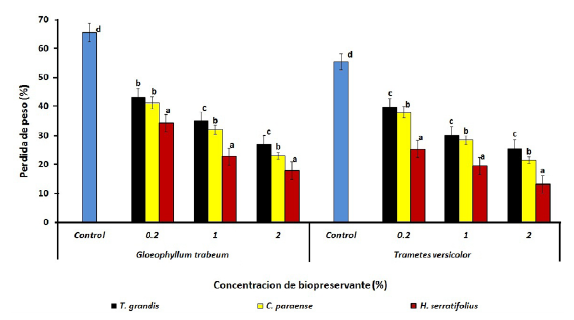 Pérdida de peso de bloques de P.caribaea tratados con el extracto etanólico de diferentes especies y expuestos a T. versicolor y G. trabeum. Barras con diferentes letras difieren significativamente (p < 0.05). Para cada concentración extracto/hongo n=12.
