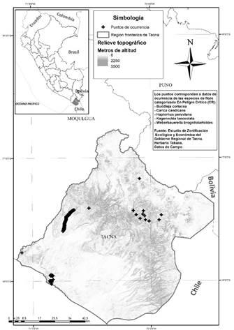 Mapa de localización estratégica del departamento de Tacna en Sudamérica y de distribución de las coordenadas geográficas en las que fueron reportadas las especies de flora categorizada (CR) evaluadas al interior del área de estudio