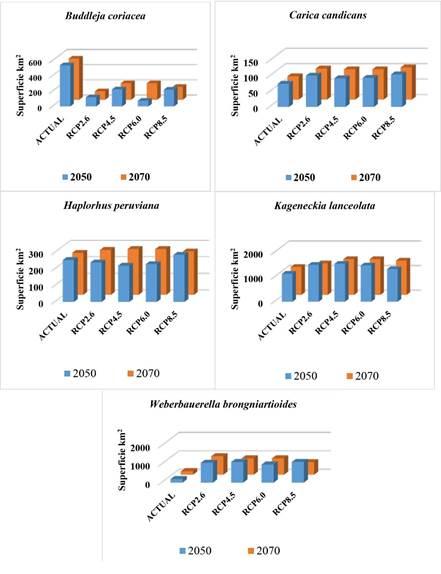 Gráficos de barras que muestran las tendencias en los cambios de la distribución actual de los nichos ecológicos de las especies categorizadas CR del departamento de Tacna en los escenarios RCP2.6, RCP4.5, RCP6.0 y RCP8.5 proyectados al 2050 y 2070 con MaxEnt.