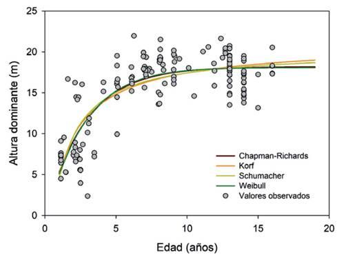 Tendencia de crecimiento promedio en H que describe cada modelo base de H evaluado.