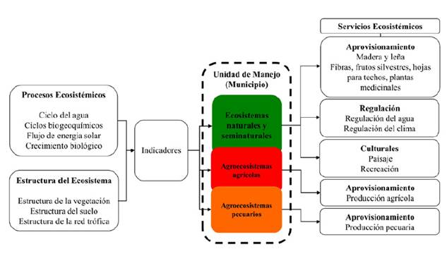 Esquema metodológico usado en la planificación de la gestión de los SE en el área de bs-T del departamento de Cundinamarca con base en Bubb et al. (2017).
