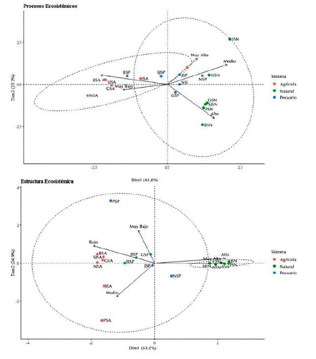 Tendencia del aporte de los diferentes municipios y ecosistemas a los procesos ecosistémicos (superior) y a la estructura del ecosistema (inferior) según el ACP. Las primeras iniciales de las unidades de aporte corresponden al municipio (B: Beltrán, G: Guataquí, J: Jerusalén; N: Nariño, P: Pulí, SJ: San Juan de Ríoseco) seguidas de los ecosistemas (SA: Agrícola, SP: Pecuario, SN: Natural).