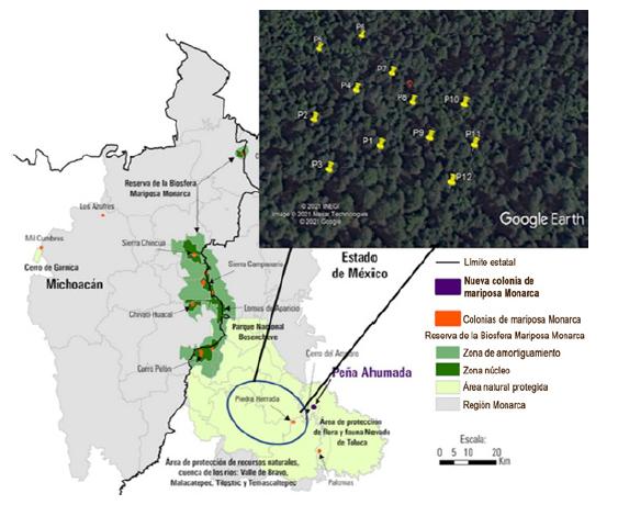 Reserva de la Biosfera Mariposa Monarca y el área de estudio Santuario Piedra Herrada (tomado y modificado de Rendón-Salinas et al., 2018).