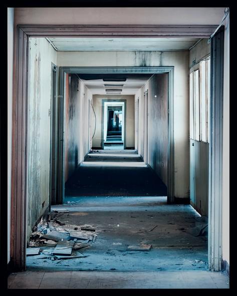 María Elvira Escallón (1954). IN VITRO, 1997. 160,5 x 127,8 x 15,5 cm. Caja de luz. Instalación. Imagen de la pieza adquirida por el Banco de la República en diciembre 2013