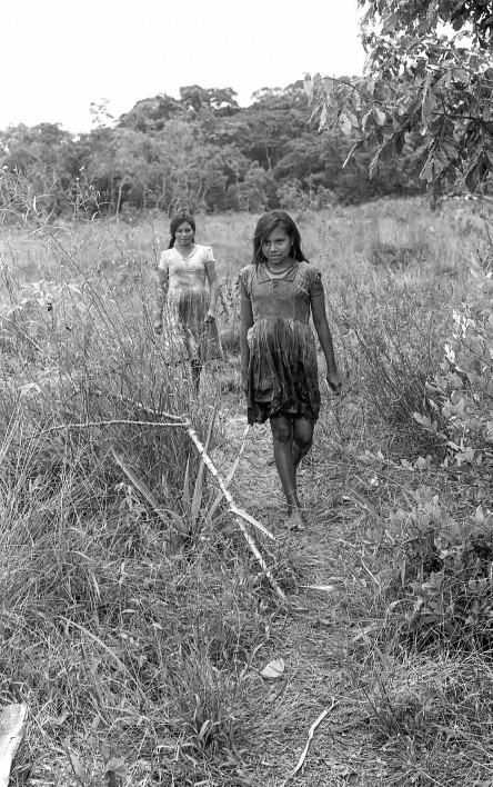 Planas (1971