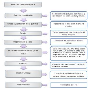 Diagrama de proceso metodológico para determinar los efectos de un recubrimiento comestible natural con base en sábila (Aloe vera) como estrategia de conservación de la guayaba (Psidium guajava L).
