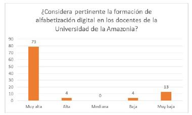 Grado de pertinencia de la alfabetización digital.