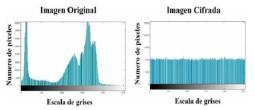Histograma escala de grises imagen Camarografo.