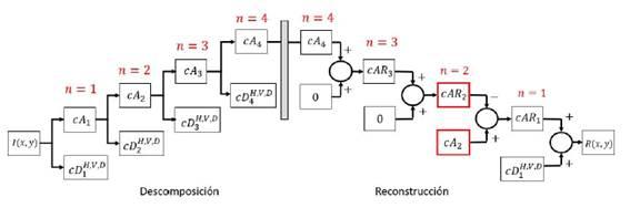Esquema de descomposición y reconstrucción de la imagen para el realce de micro calcificaciones. Donde cAn son los coeficientes de aproximación, cDH;V;D n ; son los coeficientes de detalle horizontal, vertical y diagonal del nivel de descomposición y reconstrucción