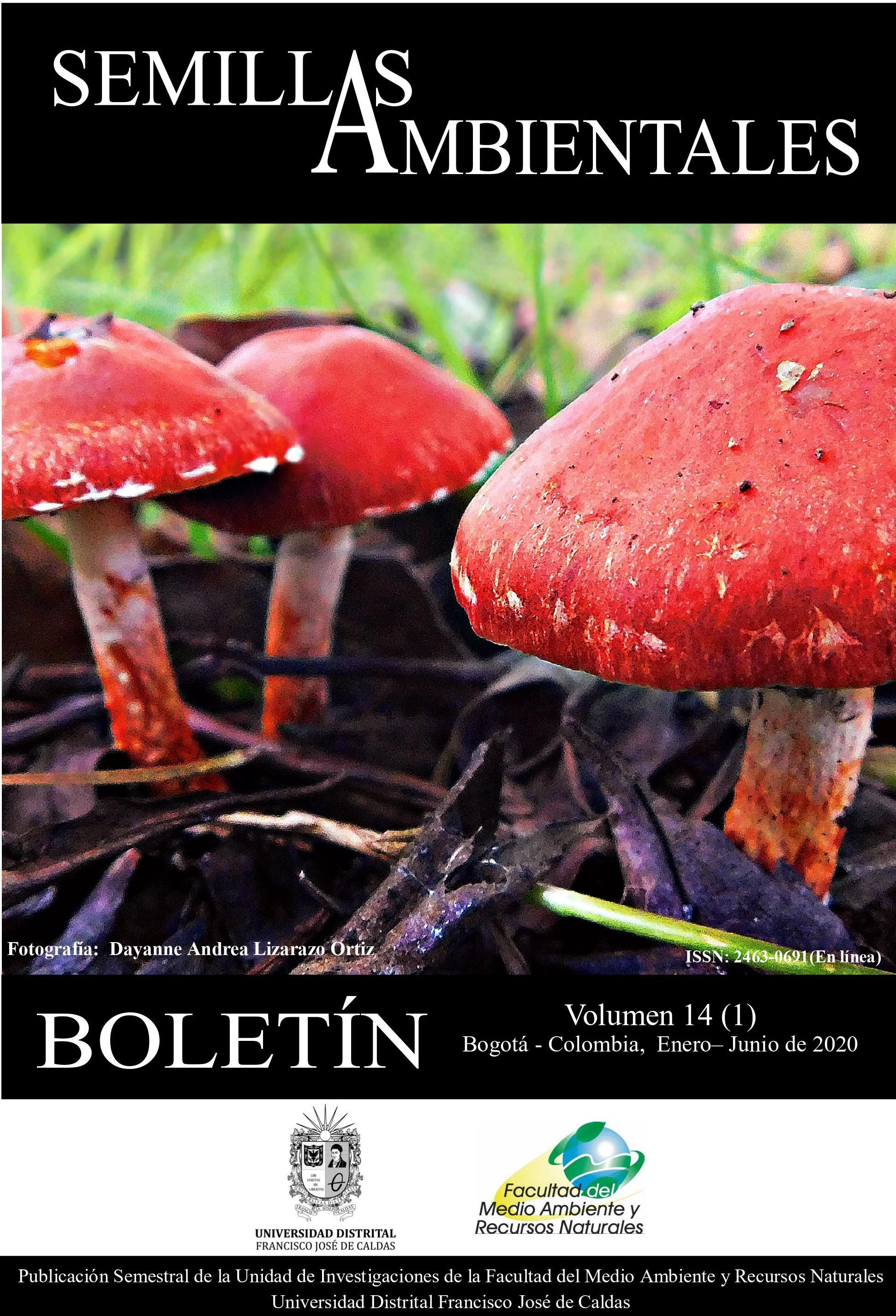 Ver Vol. 14 Núm. 1 (2020): Boletín Semillas Ambientales