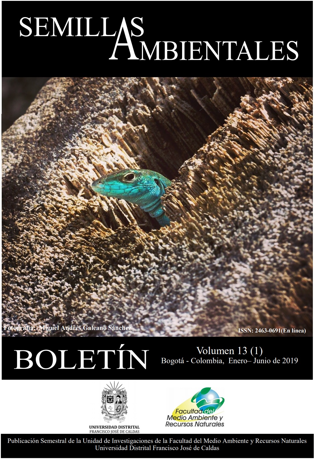 Ver Vol. 13 Núm. 1 (2019): Boletín Semillas Ambientales